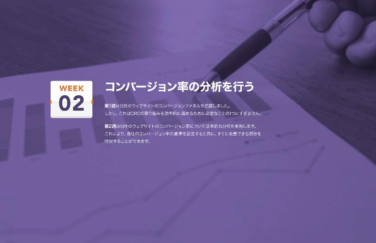 Screenshot_2020-05-14 CRO_8_Week_Planner-1_JA pdf_3